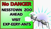 lumnous ant eating Nesstown Zoo sign